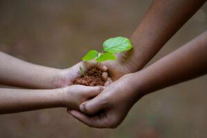 Maatschappelijk rendement belangrijk voor welzijnsorganisaties